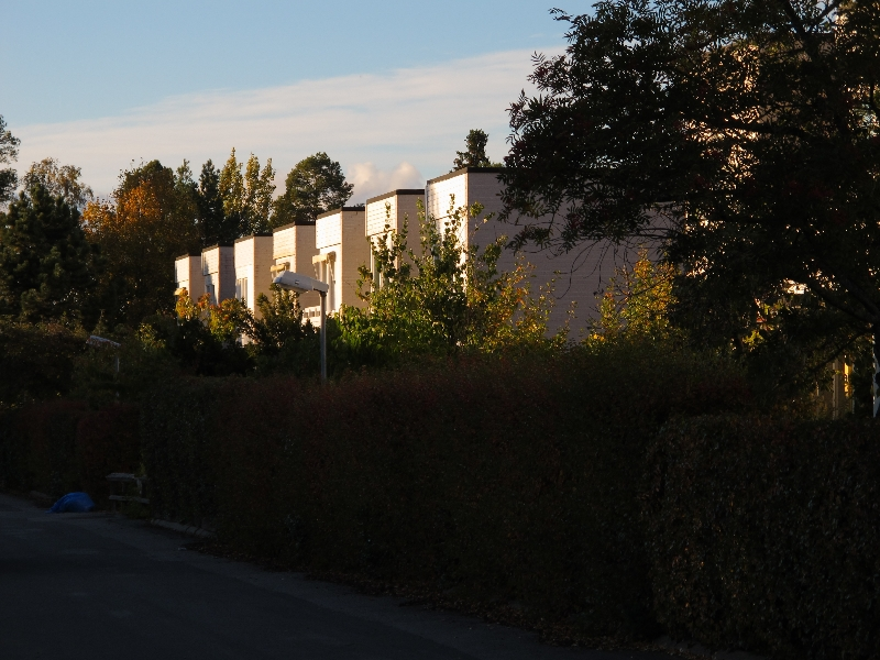 Höst 2012 11