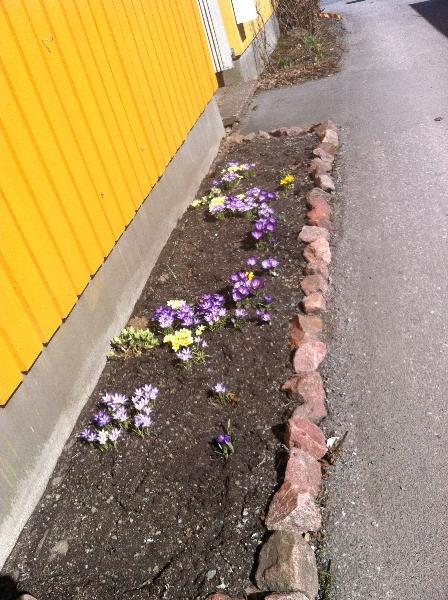 Våren 9